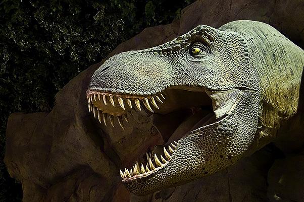 tyrannosaurus rex head dinosaurs