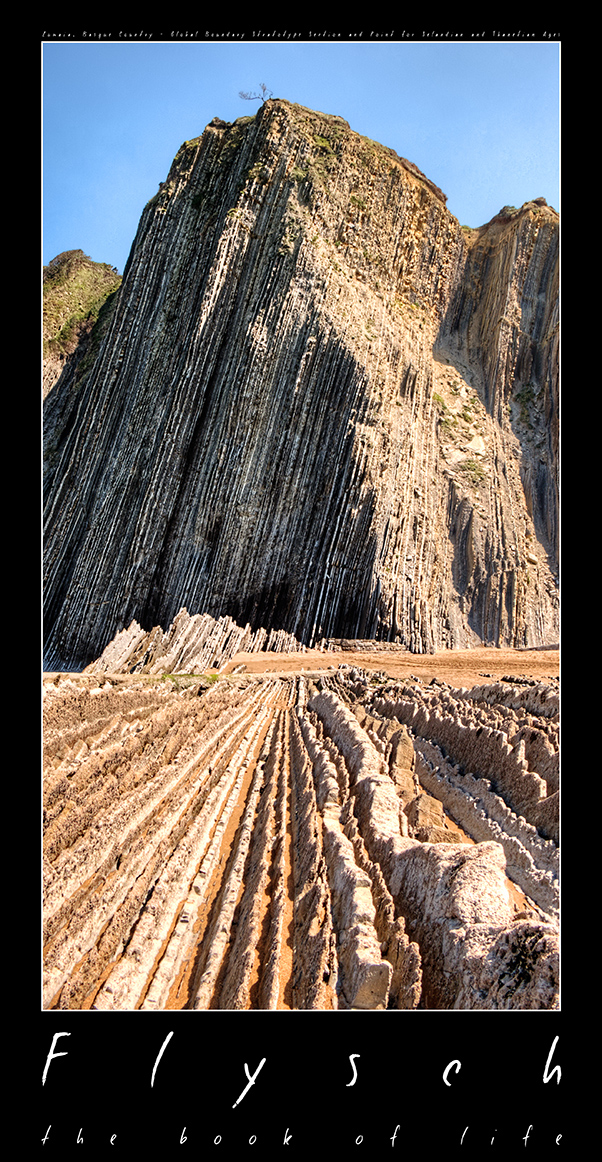flysch, book of life, extinction