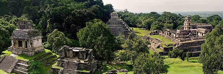 Palenque from the Jungle